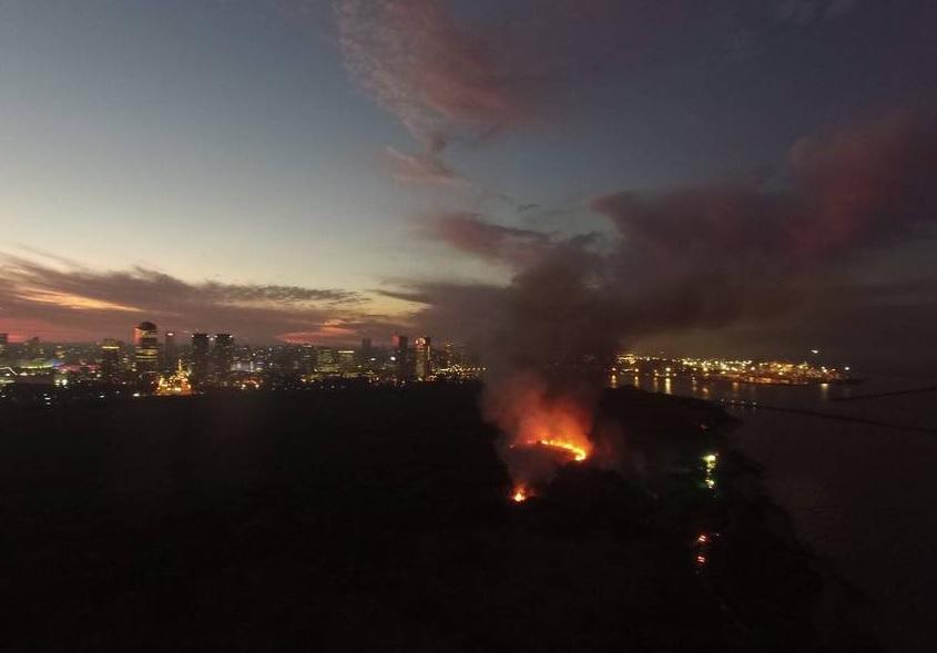 reserva ecologica incendio