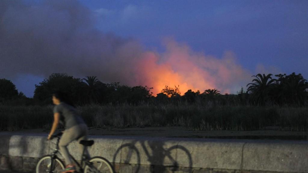 reserva ecologica incendio2